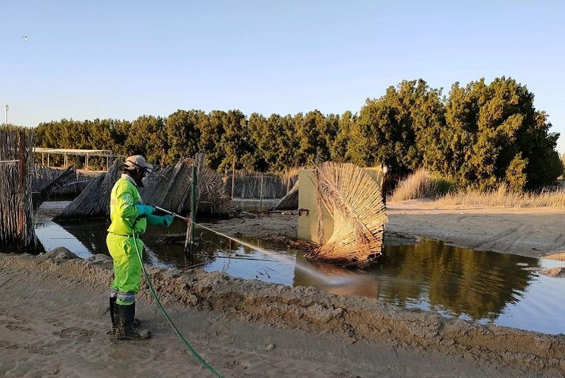 Tadweer Carries Out Clean-up Drive After Storms in Abu Dhabi